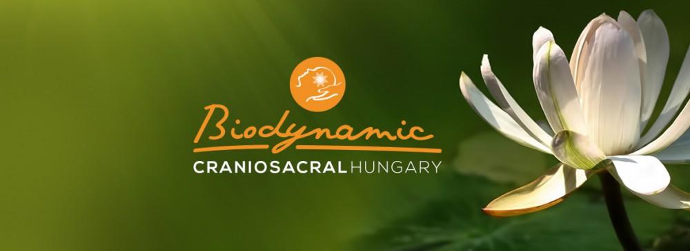 Biodynamic Craniosacral Hungary